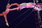 Aerial Duo Cradle Poland Artist — 0145