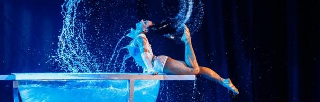 Acrobat artists — 0325